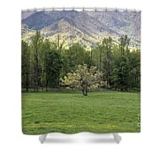 Springtime In Cades Cove Great Smoky Mountains National Park Shower Curtain