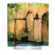 Springtime In Charleston's French Quarter Shower Curtain