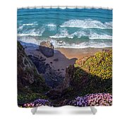 Springtime In Cornwall Shower Curtain