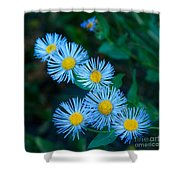 Springtime In Grand Teton Shower Curtain
