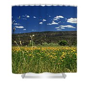 Springtime In Hat Creek Shower Curtain
