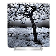 Springtime In Infrared Shower Curtain