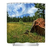 Springtime In Lassen County Shower Curtain