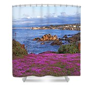 Springtime In Pacific Grove Shower Curtain