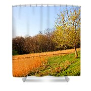 Springtime In Tennessee Shower Curtain