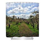 Springtime In The Apple Grove Shower Curtain