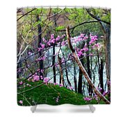 Springtime In The Mountains 2 Shower Curtain