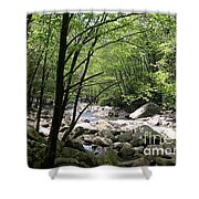 Springtime In The Smoky Mountains Shower Curtain