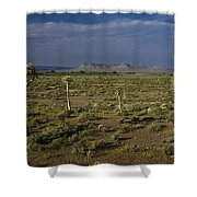 Springtime In The Western Cape Shower Curtain
