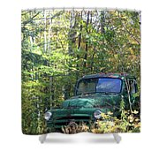 Springtime In The Woods Of Maine Shower Curtain