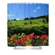 Springtime Landscape Shower Curtain