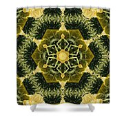 Springtime  Mandala Shower Curtain