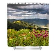 Springtime Mountain Shower Curtain