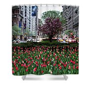 Springtime On Park Avenue Shower Curtain