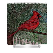 Springtime Red Cardinal Shower Curtain
