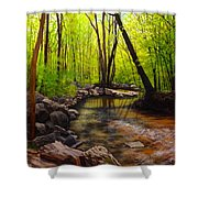 Springtime Reflected Shower Curtain