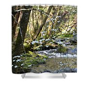 Springtime Stream In The Smokies Shower Curtain