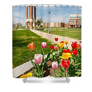 Springtime Tulips Shower Curtain