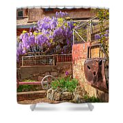 Springtime Wisteria In Old Bisbee Shower Curtain