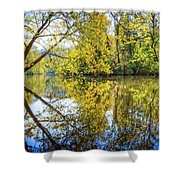 Springtime Yellows And Blues Shower Curtain
