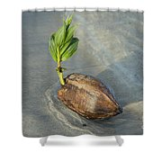 Sprouting Coconut Shower Curtain