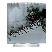 Spruce Needles And Ice Shower Curtain