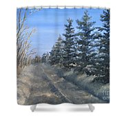 Spruce Trees Along A Snowy Road  Shower Curtain
