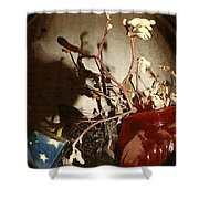 Spyglass Through Time Shower Curtain