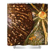 Squash 2 Shower Curtain