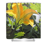 Squash Blossom Shower Curtain
