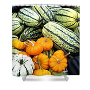 Squash Harvest Shower Curtain