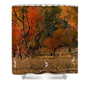 Squaw Creek Egrets Shower Curtain