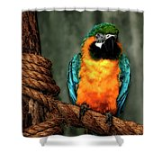 Squawk Shower Curtain