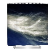 Squid Cloud Shower Curtain