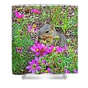 Squirrel Among Coreopsis In Huntington Gardens In San Marino-california   Shower Curtain