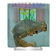 Squirrel At The Bird Feeder Shower Curtain