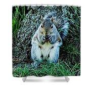 Squirrel Friend Shower Curtain