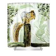 Squirrel Painting Shower Curtain