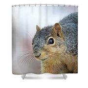 Squirrel Portrait Shower Curtain