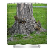Squirrel Tag Shower Curtain