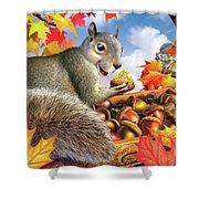 Squirrel Treasure Shower Curtain