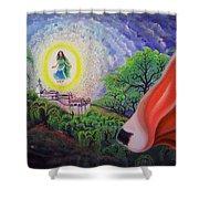 Sri Barsana Vali Shower Curtain