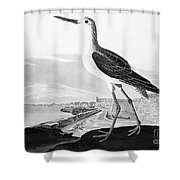 St. Augustine, Florida Shower Curtain