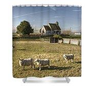 St Bartholomew Goodnestone Shower Curtain