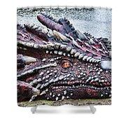 St Davids Day Dragon Shower Curtain