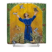 St. Francis And Birds Shower Curtain