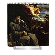 St Francis Consoled Shower Curtain