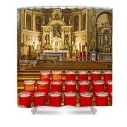 St. Hyacinth Basilica Shower Curtain