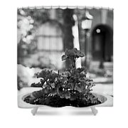St. James Court 5 Bw Shower Curtain