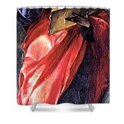 St John The Evangelist 1579 Shower Curtain